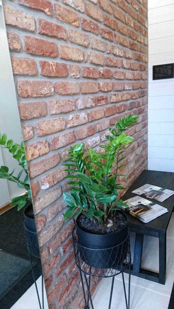 Asuntomessut 2016: Viherkasvit olivat oikea megatrendi myös asuntomessuilla