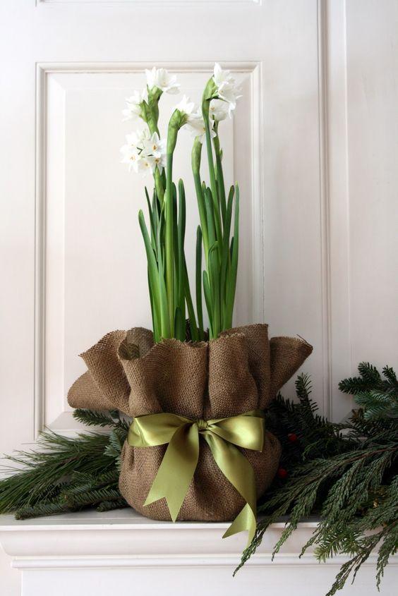 Jouluiset kukat: juuttikangas ja silkkinauha luovat kauniin kokonaisuuden.