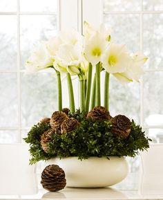 Jouluiset kukat: kävyt ja varvut ovat kaunis yhdistelmä kukanvarsien kanssa.