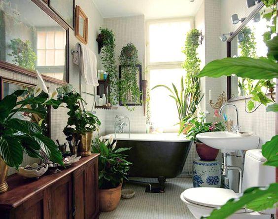Kylpyhuone kuin kasvihuone? Oikein valitut kasvit viihtyvät ja kukoistavat kosteassa ympäristössä.