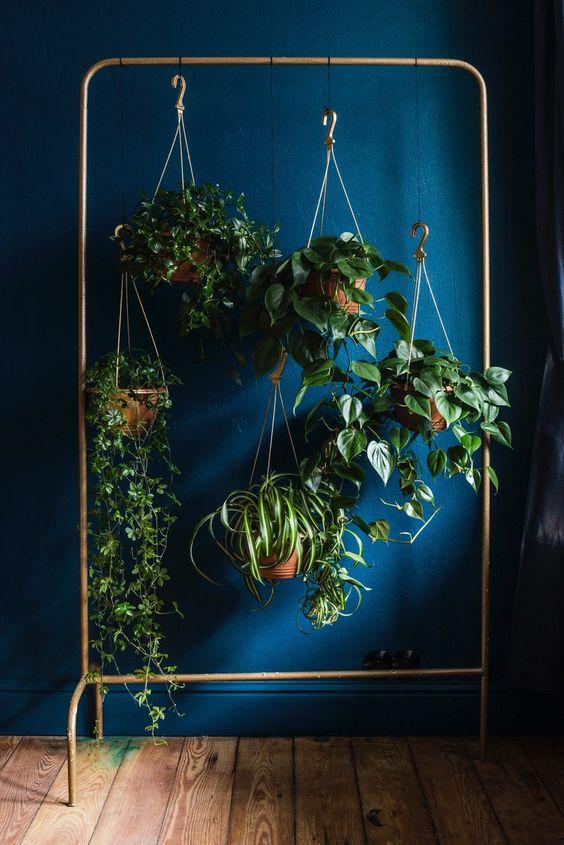 Viherkasvit ovat trendikkäitä myös amppeleissa ruikkuessaan, erityisen suosittuja ovat olleet macrame tyyliset punokset.